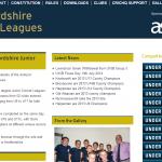 Junior leagues